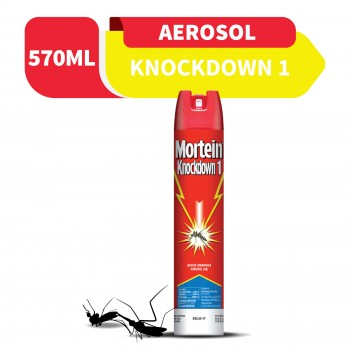 Mortein Knockdown Aerosol 570ml